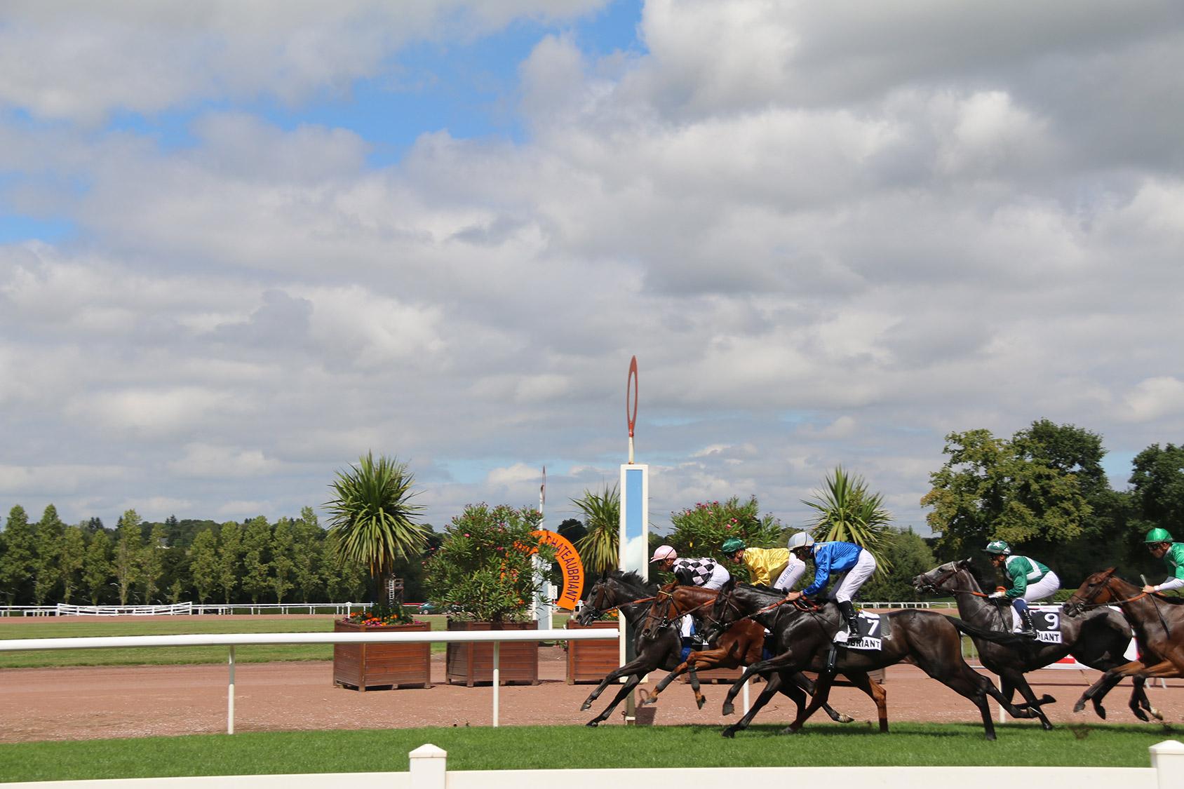 Courses-quinte+-hippodrome-de-chateaubriant